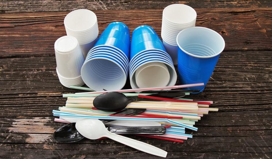 Une vaisselle jetable pas chère pour les vacances!